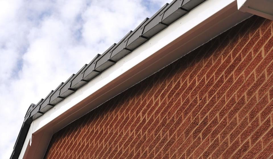 Roof Fascia in Warminster